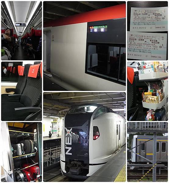NEX列車.jpg