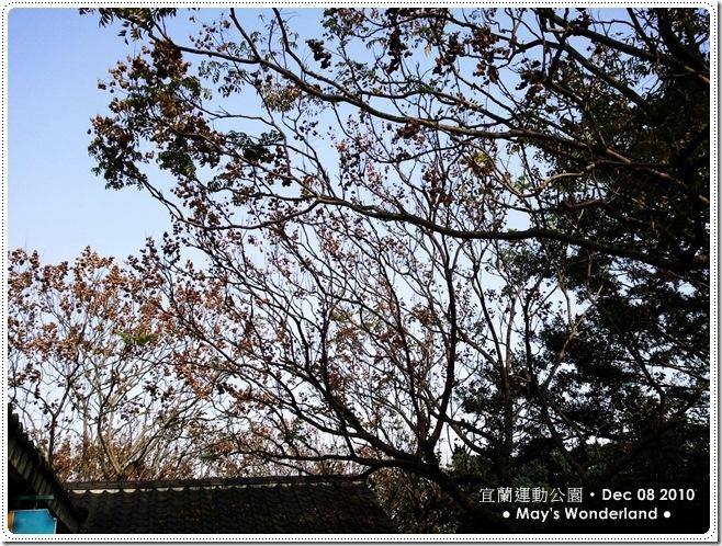 C360_2010-12-09 14-20-38