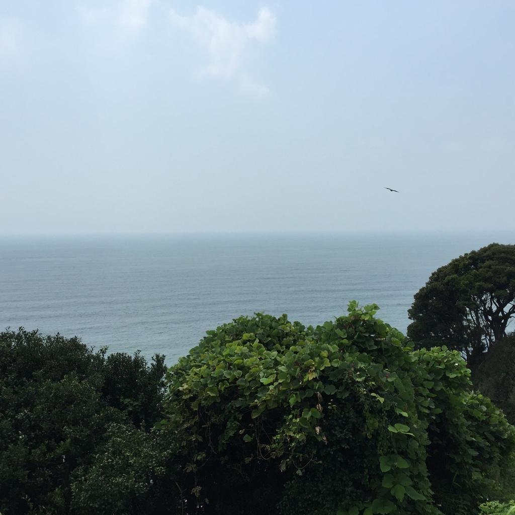 江之島14.JPG