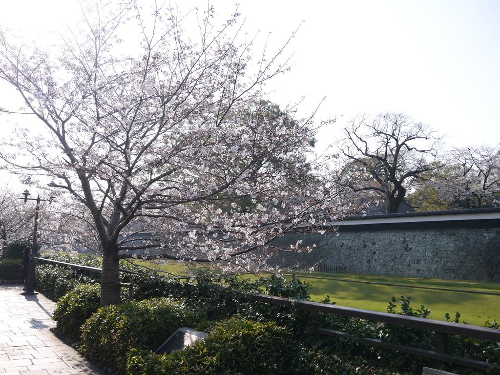 熊本城03.JPG