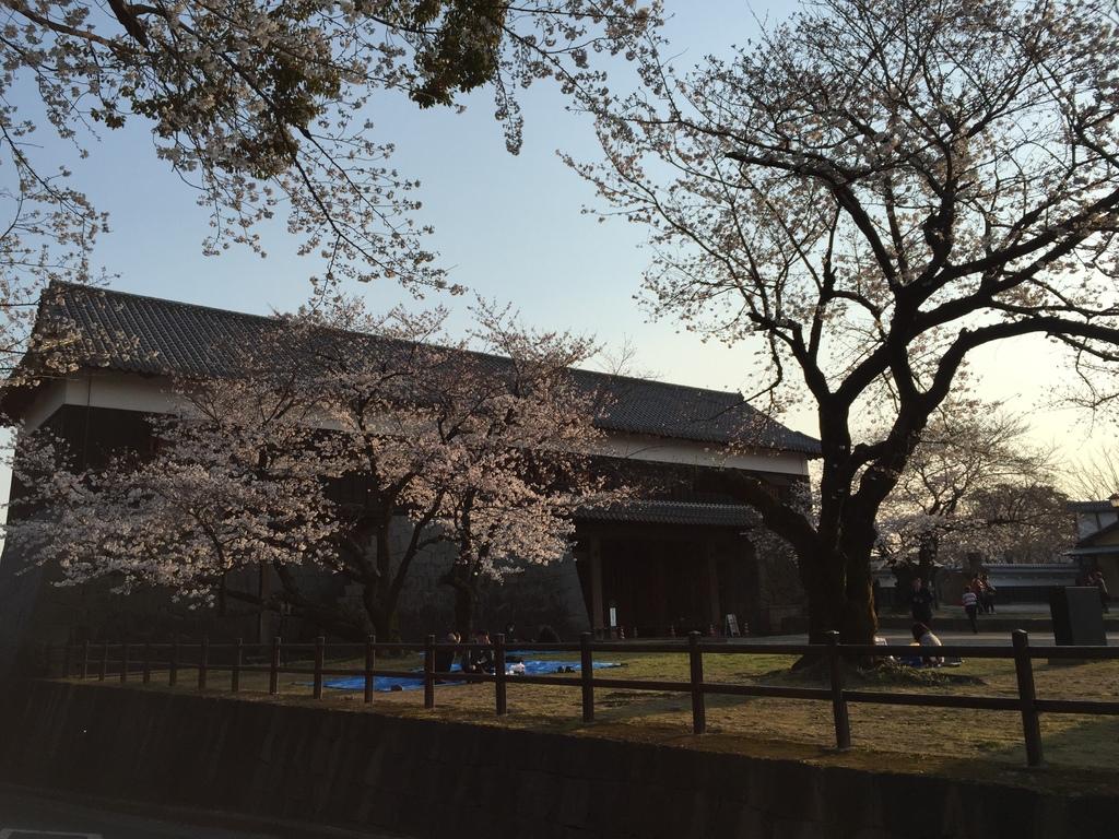 熊本城23.jpg