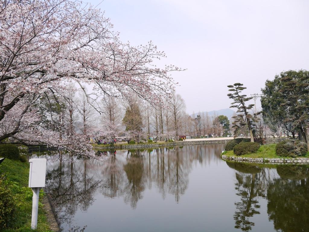 小城公園10.JPG