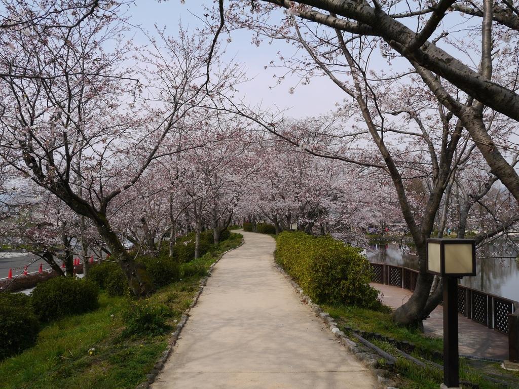 小城公園11.JPG