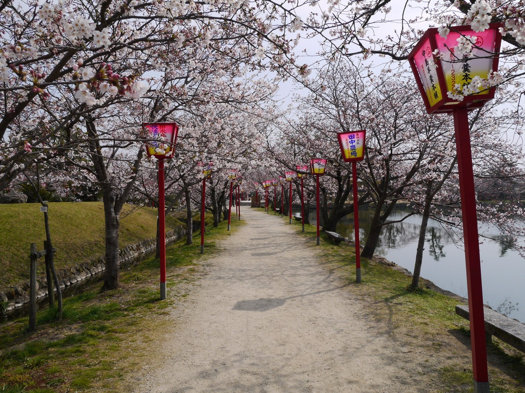 小城公園13.JPG