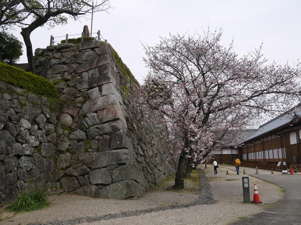 佐賀城04.JPG