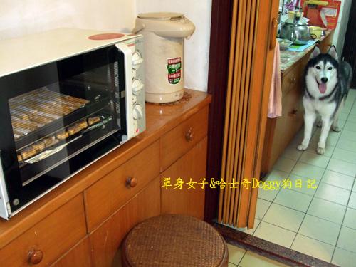 2010-10-09-059.jpg