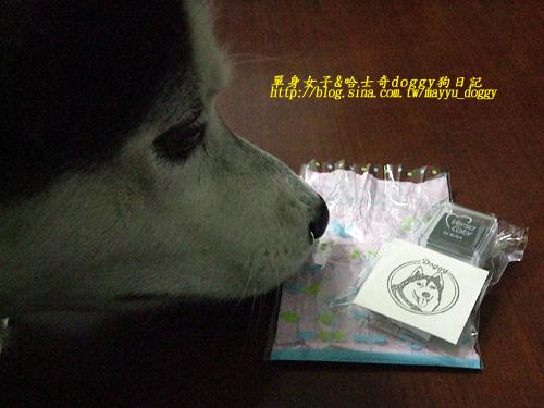 2010-01-04-050.jpg