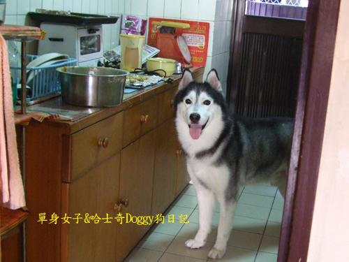 2010-10-09-132.jpg
