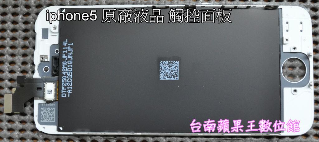 DSC_1314