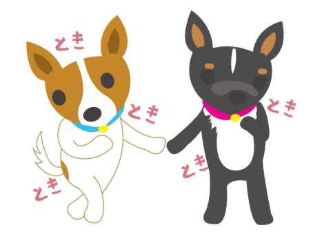 ami-kiss-dog001.jpg