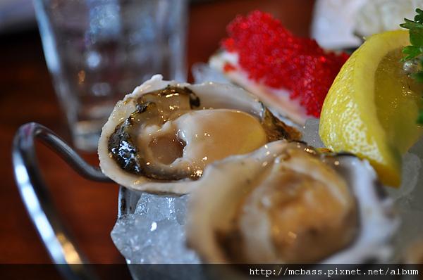 03 Oyster.jpg