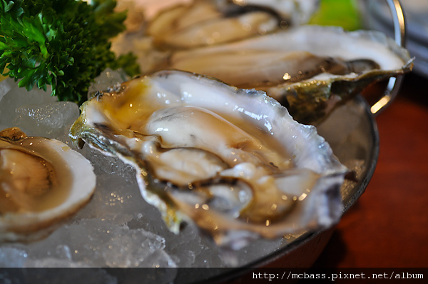 02 Oyster.jpg