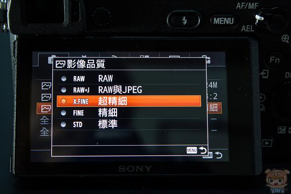 nEO_IMG_28.jpg