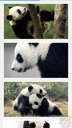 nEO_IMG_WWF_429.jpg