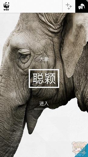 nEO_IMG_WWF_2334.jpg