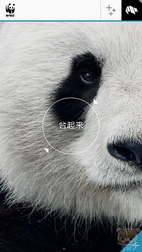 nEO_IMG_WWF_5607.jpg