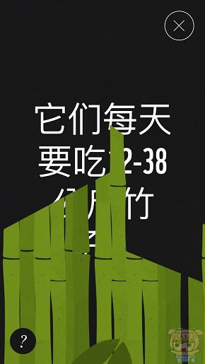 nEO_IMG_WWF_8455.jpg