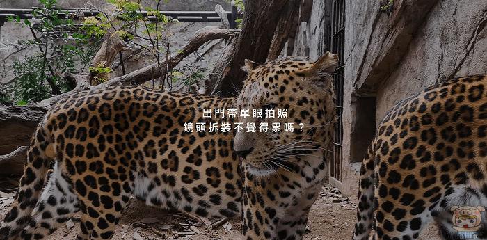 nEO_IMG_2018-04-03_045914.jpg