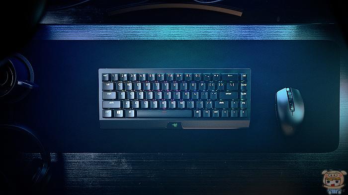 nEO_IMG_BlackWidow V3 Mini HyperSpeed [2021] Photo (7).jpg