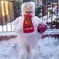 snow3_4b45ac6baf8e5302966560.jpg