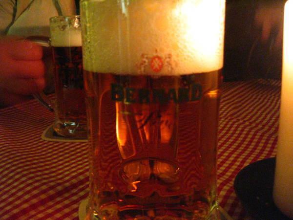 20080503 Bernard(Czech)