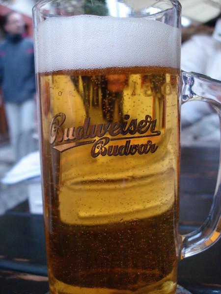 20080503 Budweiser(Czech)