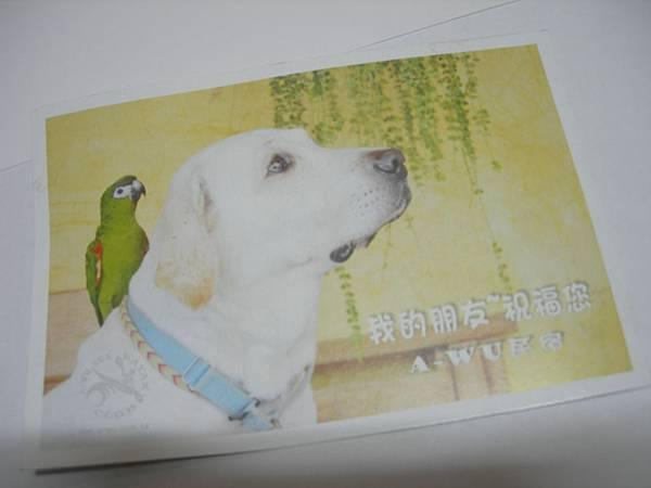 A-WU民宿寄卡片
