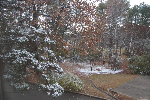 Snow in BHM.JPG