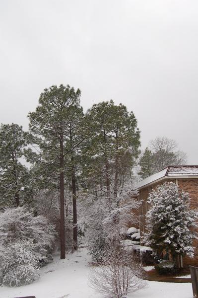Snow  Birmingham (20).JPG