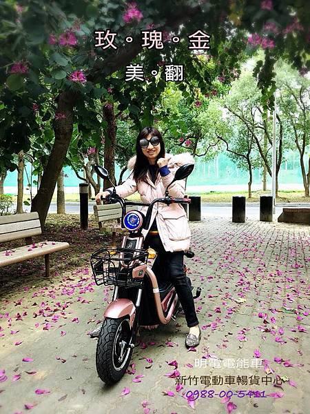 ebike_pink gold_明電新竹電動車_自行車2018.jpg