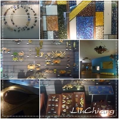 liuchiang008_20121121