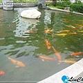 liuchiang20130616_29