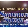summer snow_sm01.jpg