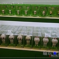 liuchiang20140207_179.jpg