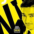 swing_web_04.jpg