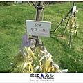 liuchiang20140923_20.JPG