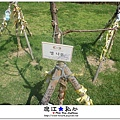 liuchiang20140923_26.JPG