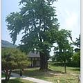 liuchiang20150531_32.JPG