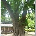 liuchiang20150531_38.JPG