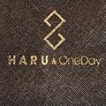 haru&oneday_bag_p3_15.jpg