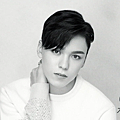 vernon_02.png