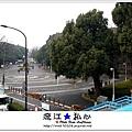 liuchiang20170302_039.jpg
