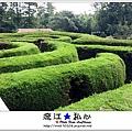 liuchiang20170924_09.jpg