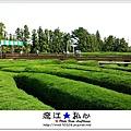 liuchiang20170924_08.jpg