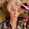 replay_8th_yesung_01.jpg