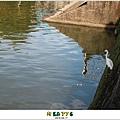 【HAVEFUN】碧湖公園|台北內湖 - 親福會我愛阿嬤101-06月聚20
