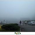 【擎天崗】台北山遊記|伸手不見五指的迷霧驚魂,消暑壯膽勝地06
