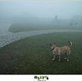 【擎天崗】台北山遊記|伸手不見五指的迷霧驚魂,消暑壯膽勝地11