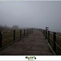 【擎天崗】台北山遊記|伸手不見五指的迷霧驚魂,消暑壯膽勝地16