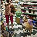 【寵物愛誌】烏龍狗生活2012,10,11|晃來晃去的鬃刷好朋友XD03